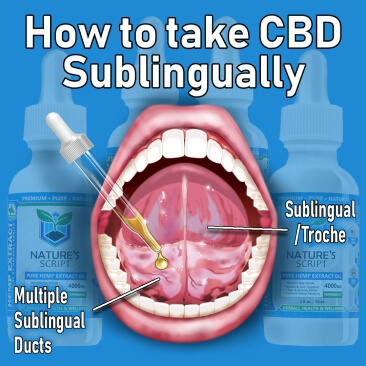 how to take cbd tincture sublingually