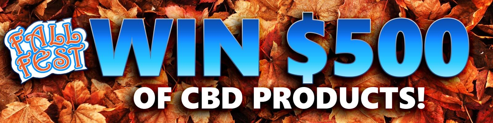 fall photo contest banner