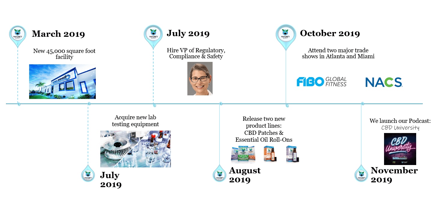 2019 Year in Review Timeline