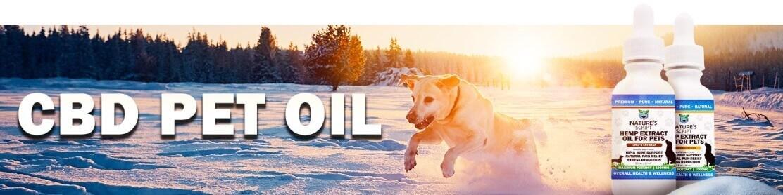 CBD Pet Oil