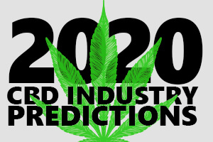 cbd industry predictions preview image