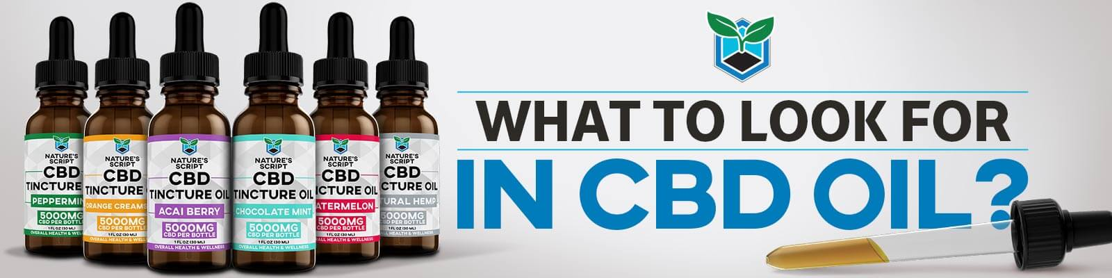 what to look for in cbd oil banner