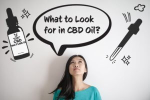 what to look for in cbd oil preview image
