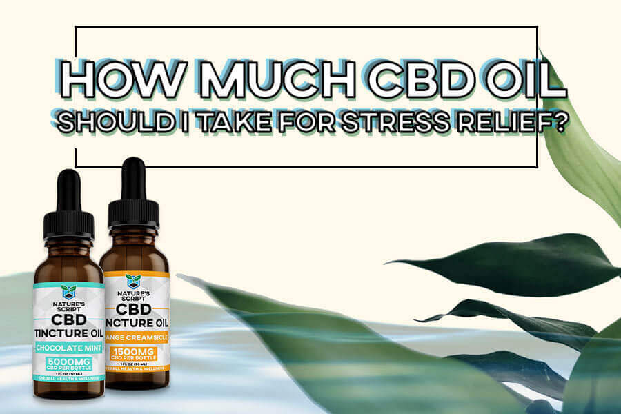 How Much CBD Oil Should I Take for Stress Relief preview