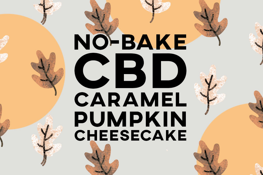 No-Bake CBD Infused Pumpkin Cheesecake Thumbnail