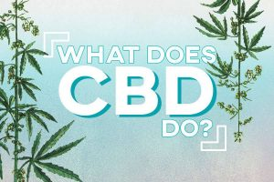 What Does CBD Do Preview